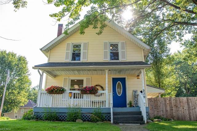 239 Grandview Avenue, Wadsworth, OH 44281 (MLS #4302449) :: RE/MAX Trends Realty