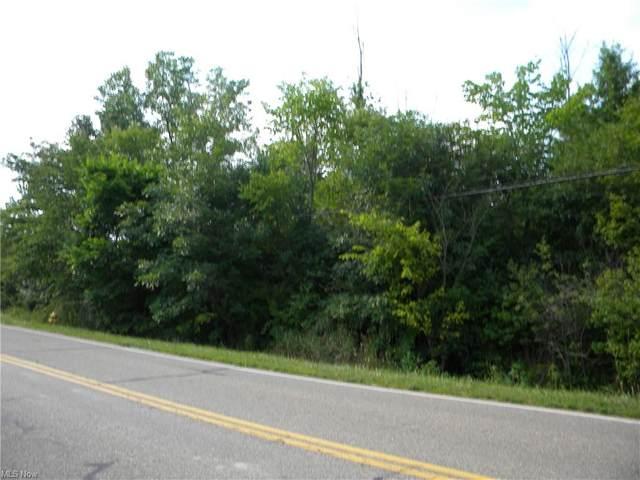 Hallock Young, Warren, OH 44481 (MLS #4302480) :: The Holden Agency