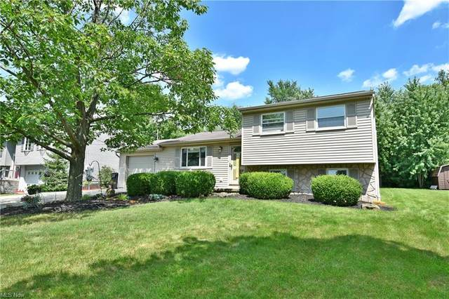 695 Purdue Avenue, Youngstown, OH 44515 (MLS #4302503) :: The Holden Agency