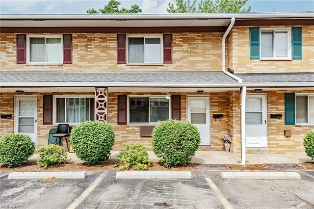 1527 Lee Terrace Drive, Wickliffe, OH 44092 (MLS #4302784) :: The City Team