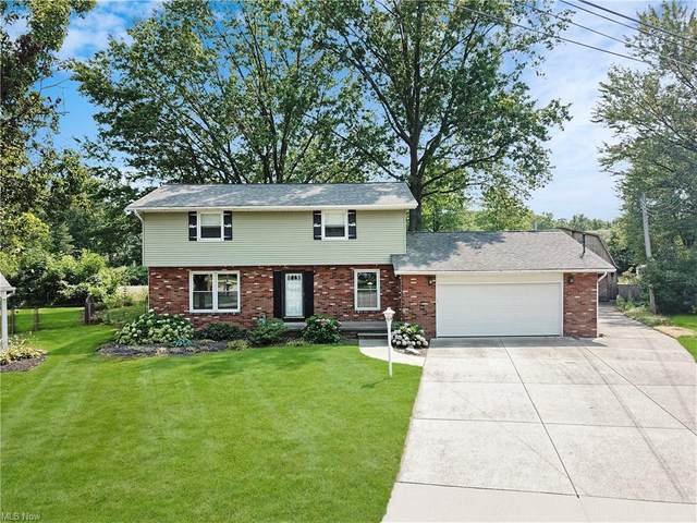 851 Princeton Avenue, Amherst, OH 44001 (MLS #4302846) :: TG Real Estate