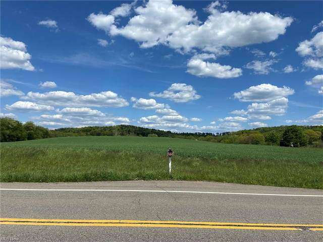 11600 State Route 164, Lisbon, OH 44432 (MLS #4302922) :: The City Team