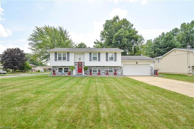 4821 Pine Trace Street, Austintown, OH 44515 (MLS #4303839) :: TG Real Estate