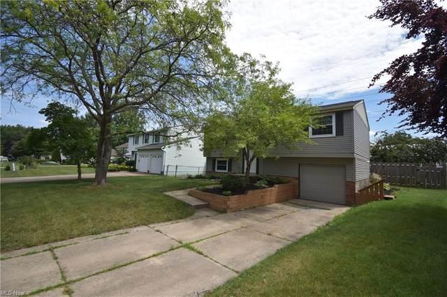 5427 Oakridge Drive, Willoughby, OH 44094 (MLS #4304233) :: Keller Williams Chervenic Realty