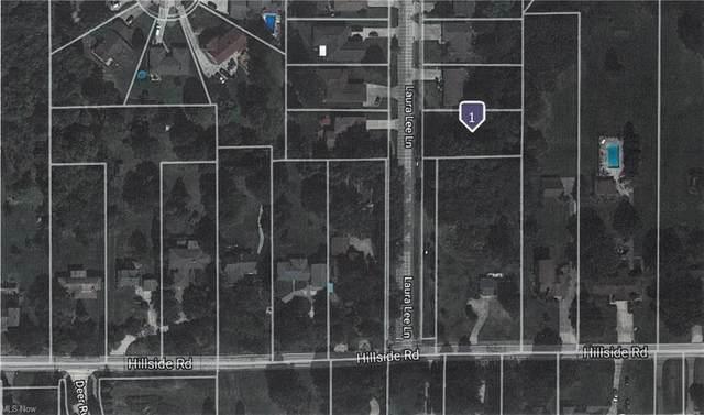Laura Lee Lane, Seven Hills, OH 44131 (MLS #4304293) :: TG Real Estate