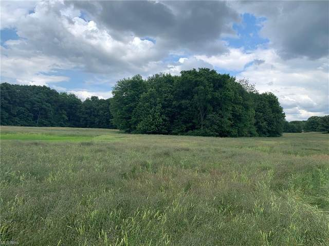 12 Acres Arlington Street NW, North Canton, OH 44720 (MLS #4305296) :: The Holly Ritchie Team