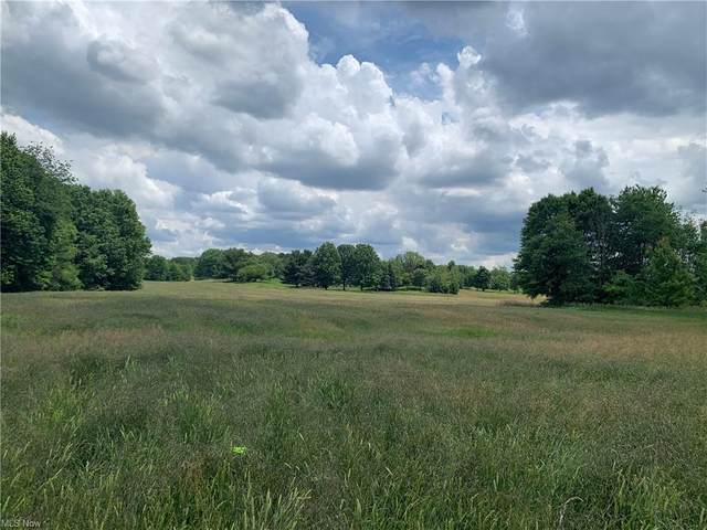 27.5 acres Strausser Street NW, North Canton, OH 44720 (MLS #4305299) :: The Holly Ritchie Team