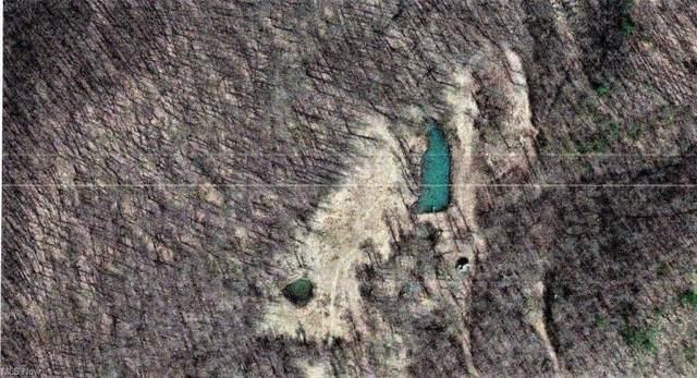 Bear Run Road, Orma, WV 25268 (MLS #4305385) :: TG Real Estate