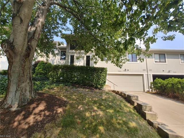 7171 N Jester Place, Painesville, OH 44077 (MLS #4306576) :: TG Real Estate