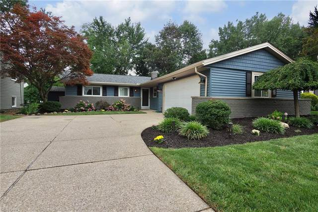5430 W 229 Street, Fairview Park, OH 44126 (MLS #4307004) :: The Holden Agency