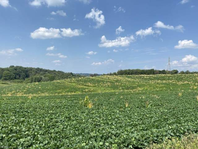 State Route 515, Millersburg, OH 44654 (MLS #4307180) :: TG Real Estate