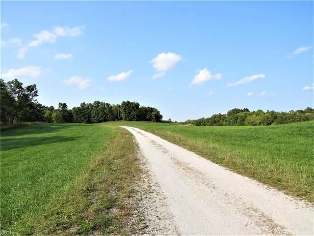 Autumn Road SE, Carrollton, OH 44615 (MLS #4307526) :: The Holden Agency