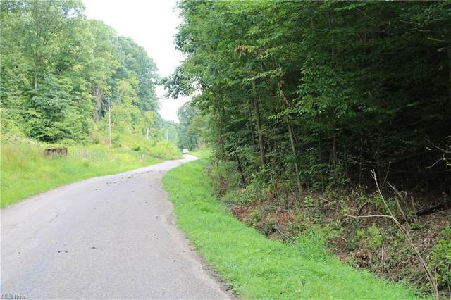 16737 Township Road 287, Conesville, OH 43811 (MLS #4307598) :: The Jess Nader Team   REMAX CROSSROADS