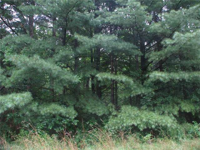 Lot 1 Mirna Road, Harpersfield, OH 44041 (MLS #4307719) :: The Holly Ritchie Team