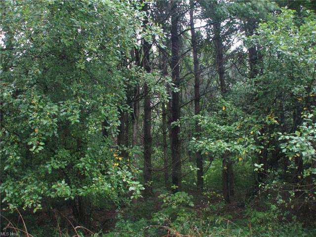 Lot 2 Mirna Road, Harpersfield, OH 44041 (MLS #4307738) :: The Holly Ritchie Team