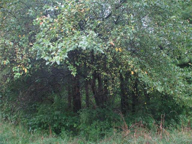 Lot 3 Mirna Road, Harpersfield, OH 44041 (MLS #4307747) :: The Holly Ritchie Team
