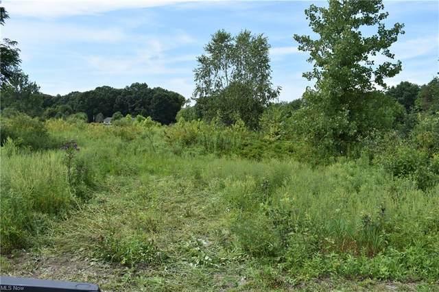 Benedict Leavittsburg Road, Leavittsburg, OH 44430 (MLS #4308338) :: TG Real Estate