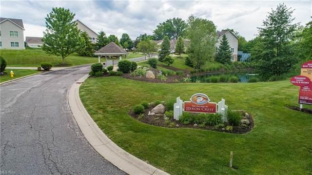 Heron Lakes Circle, Akron, OH 44203 (MLS #4308353) :: TG Real Estate