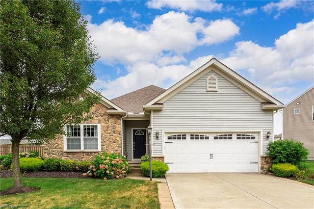 3815 Arcadia Circle, Willoughby, OH 44094 (MLS #4308368) :: The Jess Nader Team | REMAX CROSSROADS