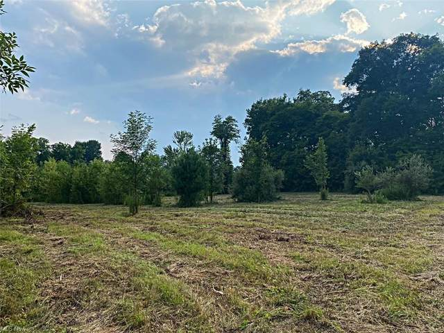 State Route 82, Newton Falls, OH 44444 (MLS #4308714) :: TG Real Estate