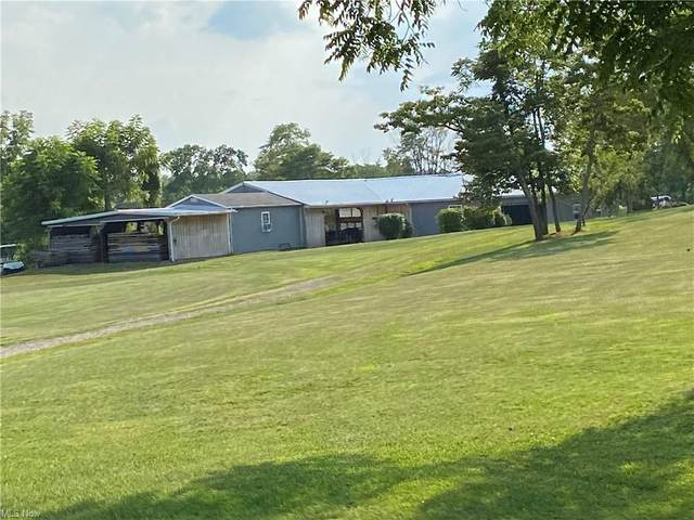 9000 Harmon Hollow Road, Chandlersville, OH 43727 (MLS #4309179) :: The Holly Ritchie Team