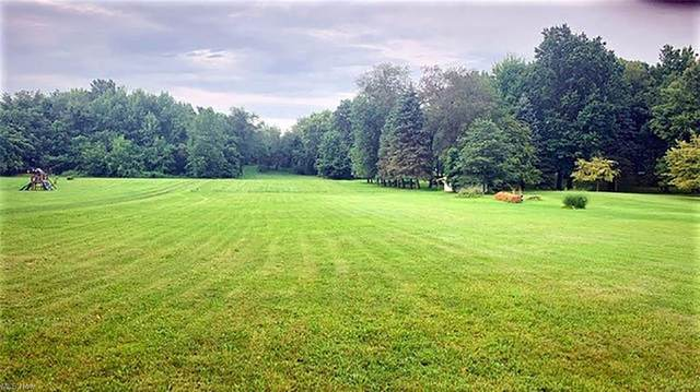 Greensburg Road, Green, OH 44232 (MLS #4309372) :: TG Real Estate