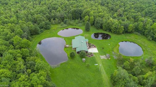 7259 Richardson Road, Conneaut, OH 44030 (MLS #4309431) :: Keller Williams Legacy Group Realty