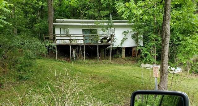 2 Tr 305, Freeport, OH 43973 (MLS #4309505) :: The Holden Agency