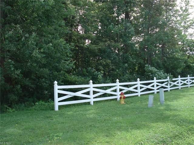 VL Lake State Rd 531 Road, Ashtabula, OH 44004 (MLS #4309613) :: TG Real Estate