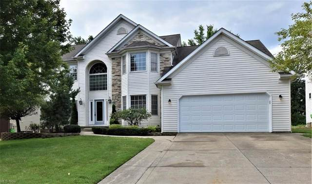 6540 Woodhawk Drive, Mayfield Heights, OH 44124 (MLS #4310147) :: Simply Better Realty