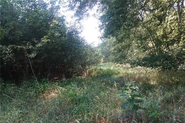 State Rd 60, Killbuck, OH 44637 (MLS #4310573) :: TG Real Estate