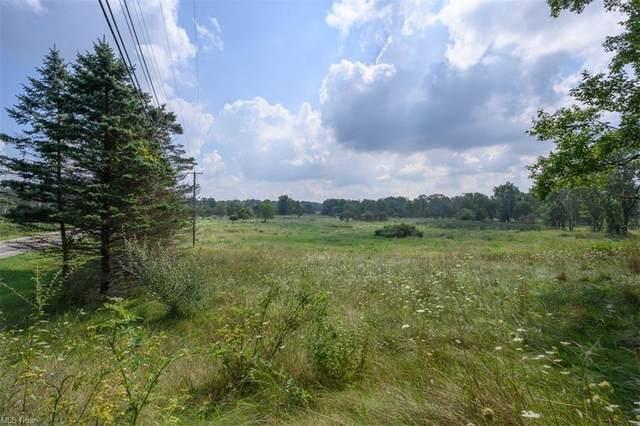 662 W Streetsboro Street, Hudson, OH 44236 (MLS #4310603) :: TG Real Estate