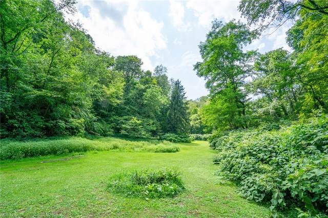 53520 Trough Run Road, Bellaire, OH 43906 (MLS #4310662) :: The Holden Agency