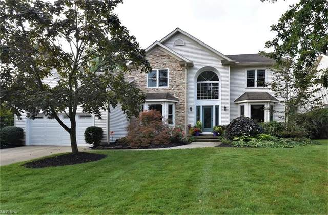 6596 Woodhawk Drive, Mayfield Heights, OH 44124 (MLS #4311762) :: Simply Better Realty