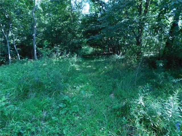Flint Ridge Road, Hopewell, OH 43746 (MLS #4312197) :: TG Real Estate