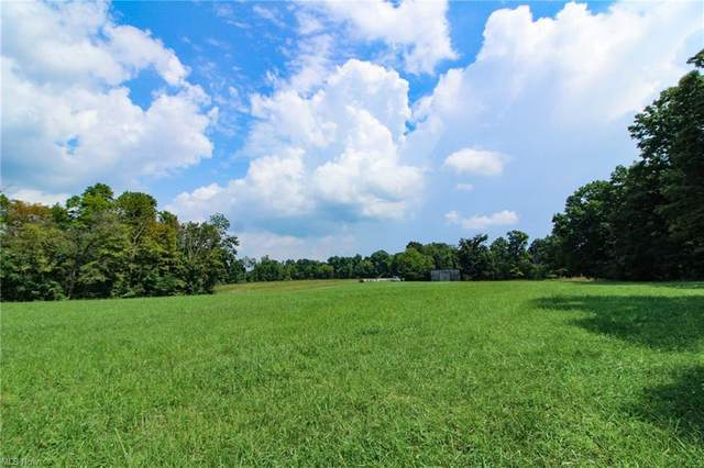 Wilsonwood Road, Blue Rock, OH 43720 (MLS #4312636) :: The Holly Ritchie Team