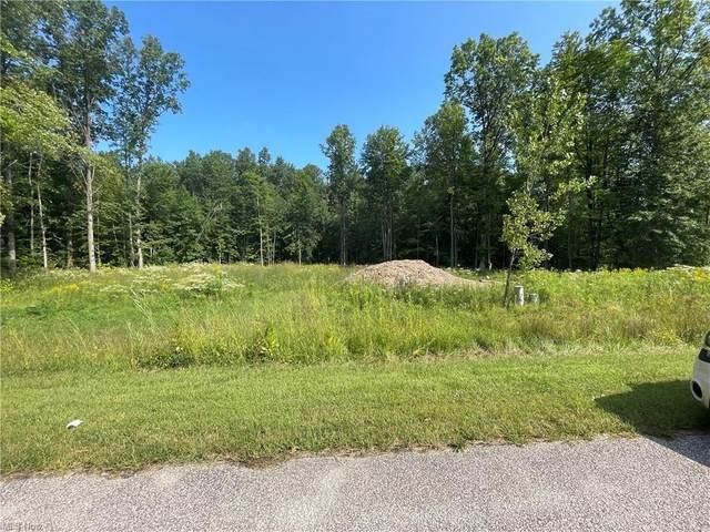 Brooke Lane, Saybrook, OH 44004 (MLS #4313163) :: Select Properties Realty