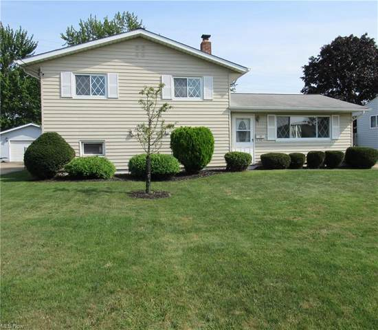 6287 Michael Drive, Brook Park, OH 44142 (MLS #4313184) :: Simply Better Realty