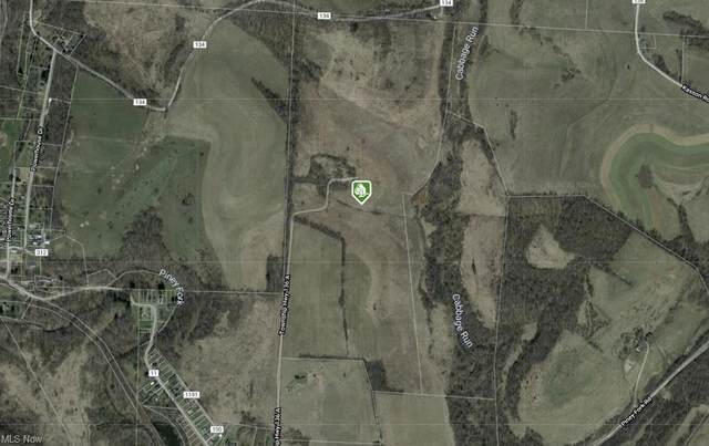 County Road 11, Dillonvale, OH 43917 (MLS #4313240) :: TG Real Estate