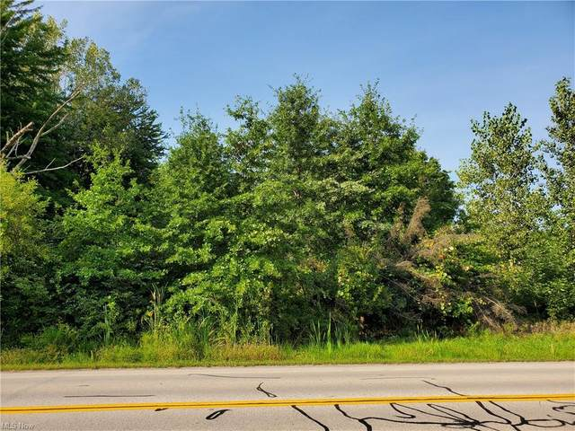 27120 Sprague Road, Olmsted Township, OH 44138 (MLS #4313706) :: The Holden Agency