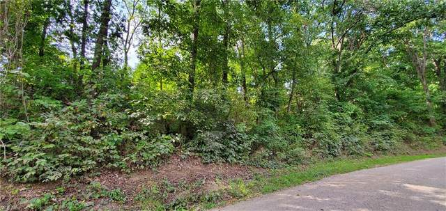 Cherry Hill Road, Senecaville, OH 43780 (MLS #4314014) :: The Jess Nader Team | REMAX CROSSROADS
