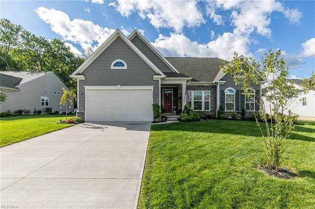 36581 Annie Lane, North Ridgeville, OH 44039 (MLS #4314573) :: Krch Realty