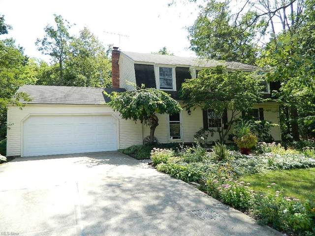 9776 Martinique Drive, Concord, OH 44060 (MLS #4314728) :: Tammy Grogan and Associates at Keller Williams Chervenic Realty