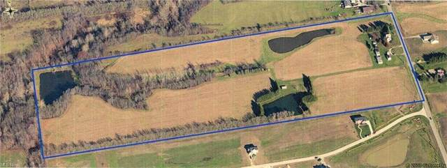 2326 Marks Road, Valley City, OH 44280 (MLS #4314998) :: TG Real Estate