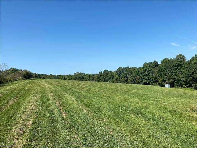 11469 Dolway Avenue, Beach City, OH 44608 (MLS #4315042) :: The Jess Nader Team | REMAX CROSSROADS