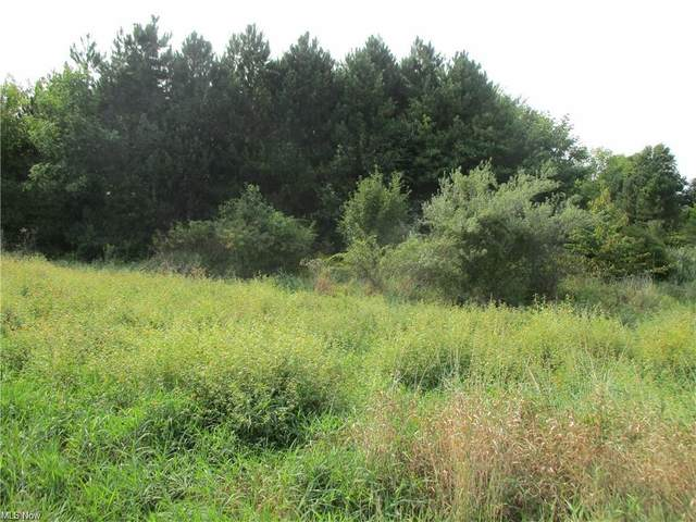 S State Line Road, New Middletown, OH 44442 (MLS #4315208) :: The Holden Agency