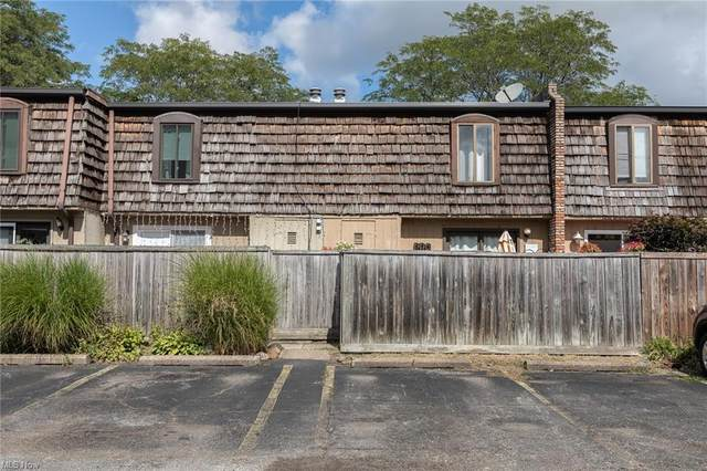 1651 Mentor Avenue #407, Painesville, OH 44077 (MLS #4315655) :: TG Real Estate