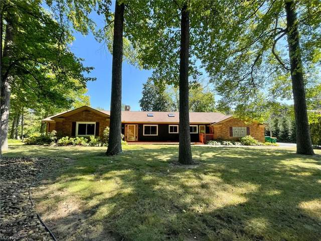 7231 Chillicothe Road, Mentor, OH 44060 (MLS #4315866) :: The Jess Nader Team | REMAX CROSSROADS