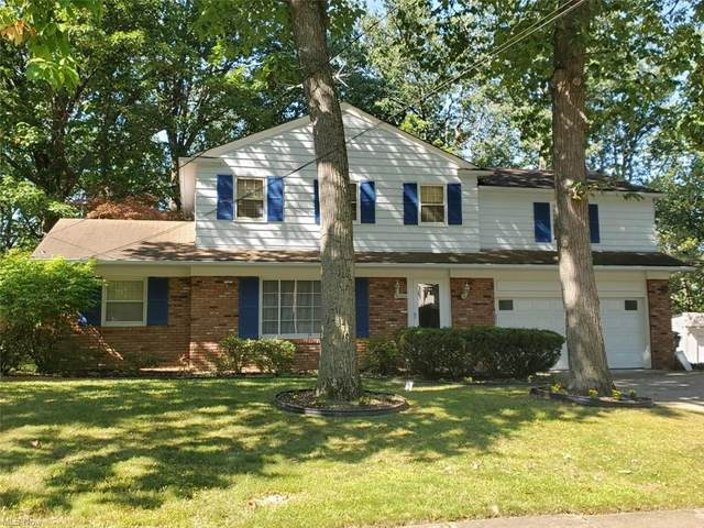 19570 Seminole Road, Euclid, OH 44117 (MLS #4316056) :: Simply Better Realty