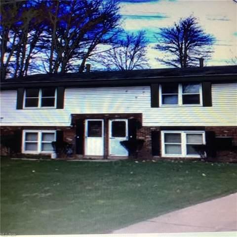 290 Louis Avenue, Girard, OH 44420 (MLS #4316353) :: Tammy Grogan and Associates at Keller Williams Chervenic Realty